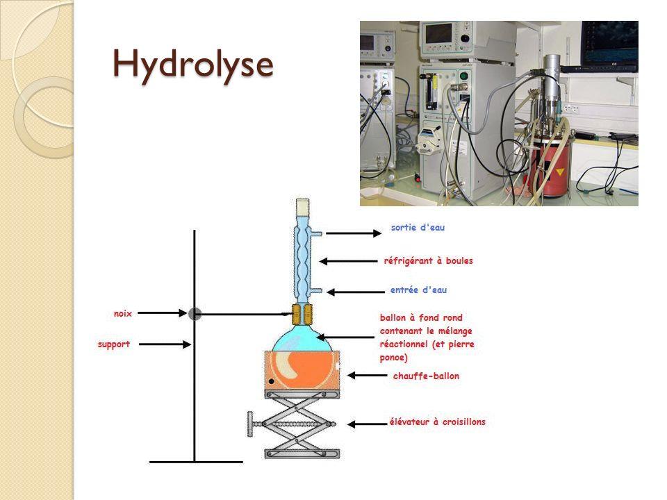 Hydrolyse