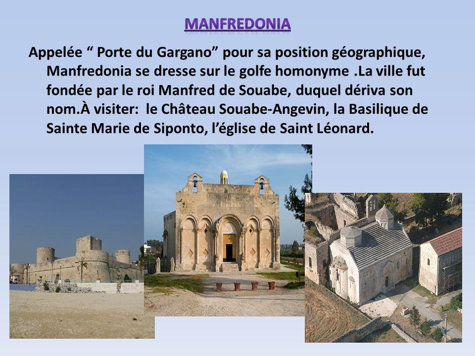 Appelée Porte du Gargano pour sa position géographique, Manfredonia se dresse sur le golfe homonyme.La ville fut fondée par le roi Manfred de Souabe,