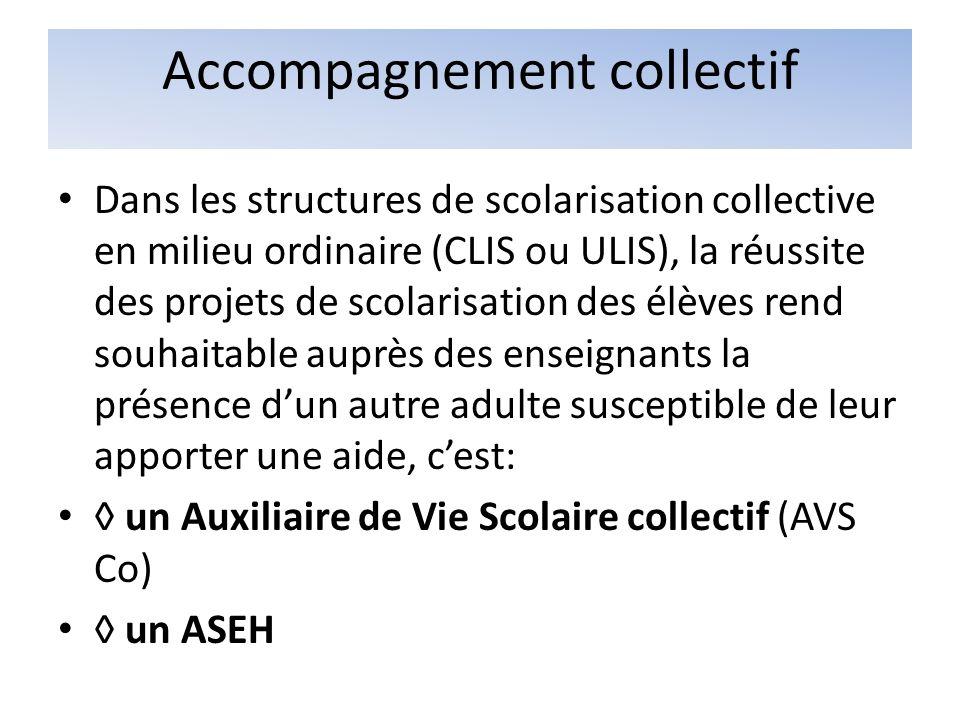 Accompagnement collectif Dans les structures de scolarisation collective en milieu ordinaire (CLIS ou ULIS), la réussite des projets de scolarisation