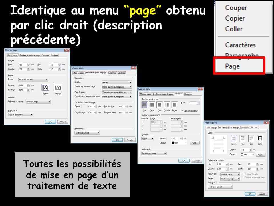 Identique au menu page obtenu par clic droit (description précédente) Toutes les possibilités de mise en page dun traitement de texte