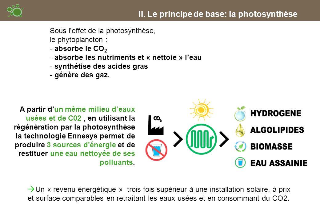 II. Le principe de base: la photosynthèse Un « revenu énergétique » trois fois supérieur à une installation solaire, à prix et surface comparables en