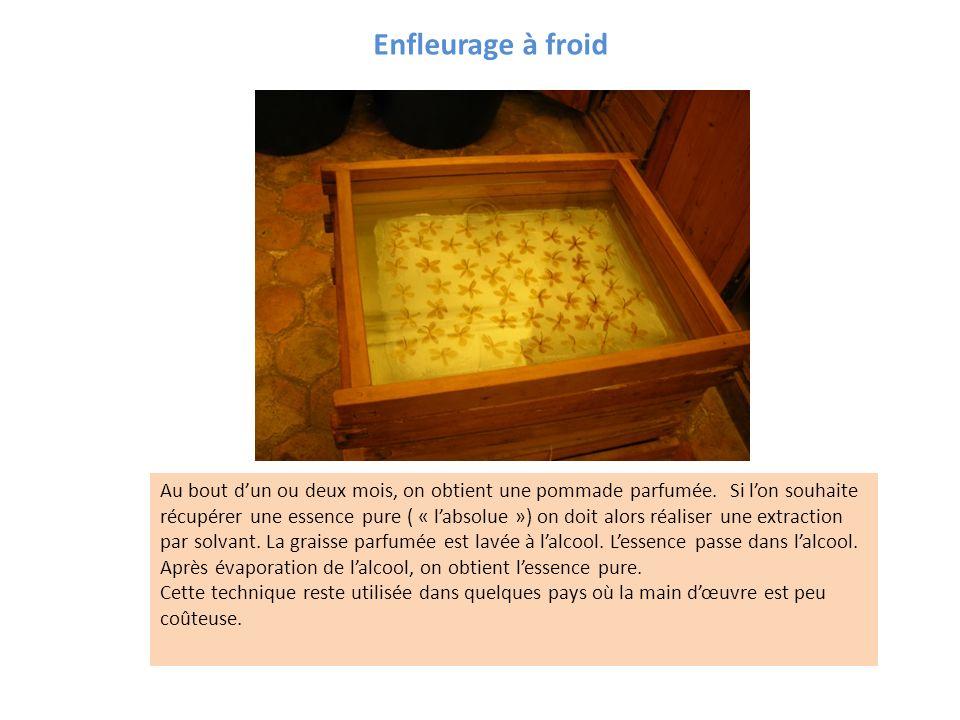 Enfleurage à froid Cette technique a été utilisée en France jusque dans la première moitié du XXème siècle pour extraire les substances odorantes qui