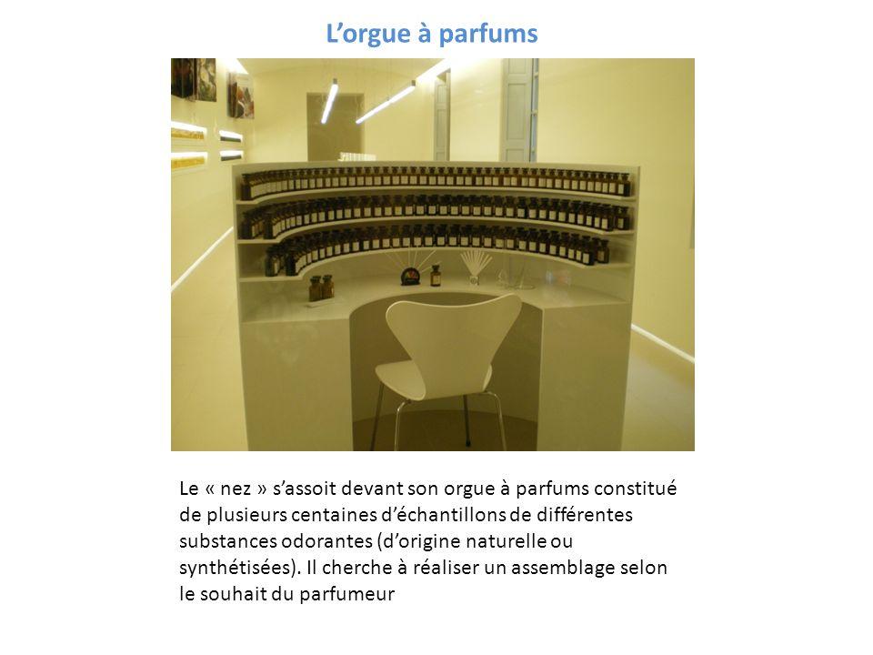 Lorgue à parfums Le « nez » sassoit devant son orgue à parfums constitué de plusieurs centaines déchantillons de différentes substances odorantes (dor