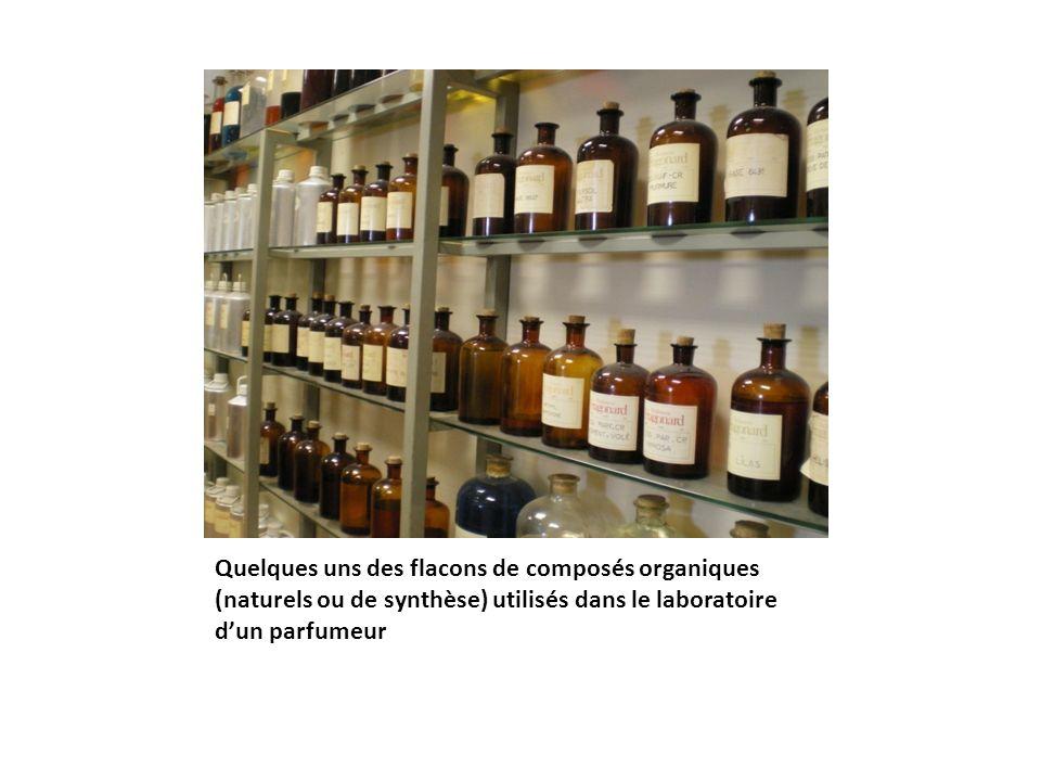 Quelques uns des flacons de composés organiques (naturels ou de synthèse) utilisés dans le laboratoire dun parfumeur