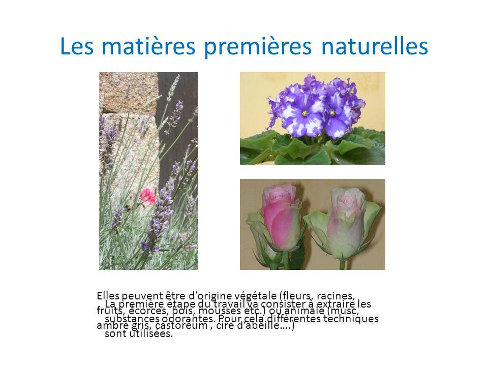 Les matières premières naturelles Elles peuvent être dorigine végétale (fleurs, racines, fruits, écorces, bois, mousses etc.) ou animale (musc, ambre