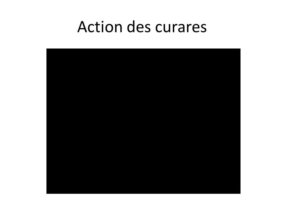 Action des curares