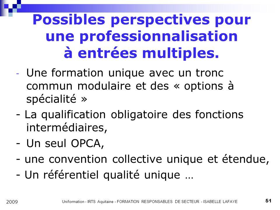 Uniformation - IRTS Aquitaine - FORMATION RESPONSABLES DE SECTEUR - ISABELLE LAFAYE 51 2009 Possibles perspectives pour une professionnalisation à entrées multiples.