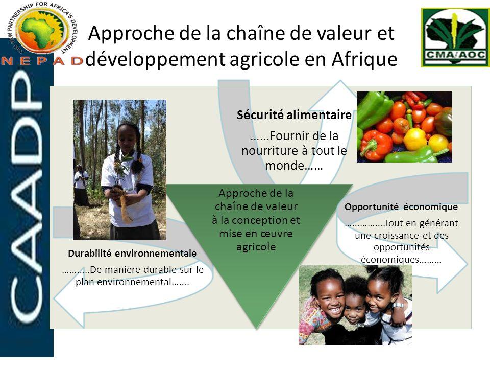 Approche de la chaîne de valeur et développement agricole en Afrique Sécurité alimentaire ……Fournir de la nourriture à tout le monde…… Durabilité envi
