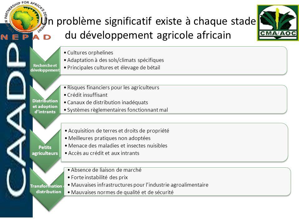 Un problème significatif existe à chaque stade du développement agricole africain Recherche et développement Cultures orphelines Adaptation à des sols
