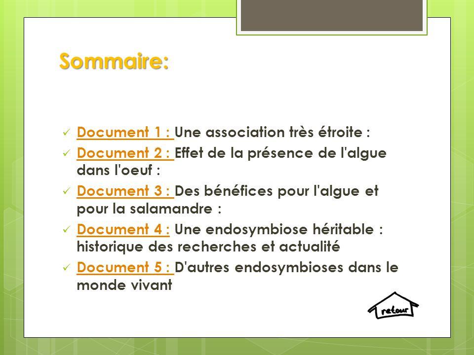 Sommaire: Document 1 : Une association très étroite : Document 1 : Document 2 : Effet de la présence de l algue dans l oeuf : Document 2 : Document 3 : Des bénéfices pour l algue et pour la salamandre : Document 3 : Document 4 : Une endosymbiose héritable : historique des recherches et actualité Document 4 : Document 5 : D autres endosymbioses dans le monde vivant Document 5 :