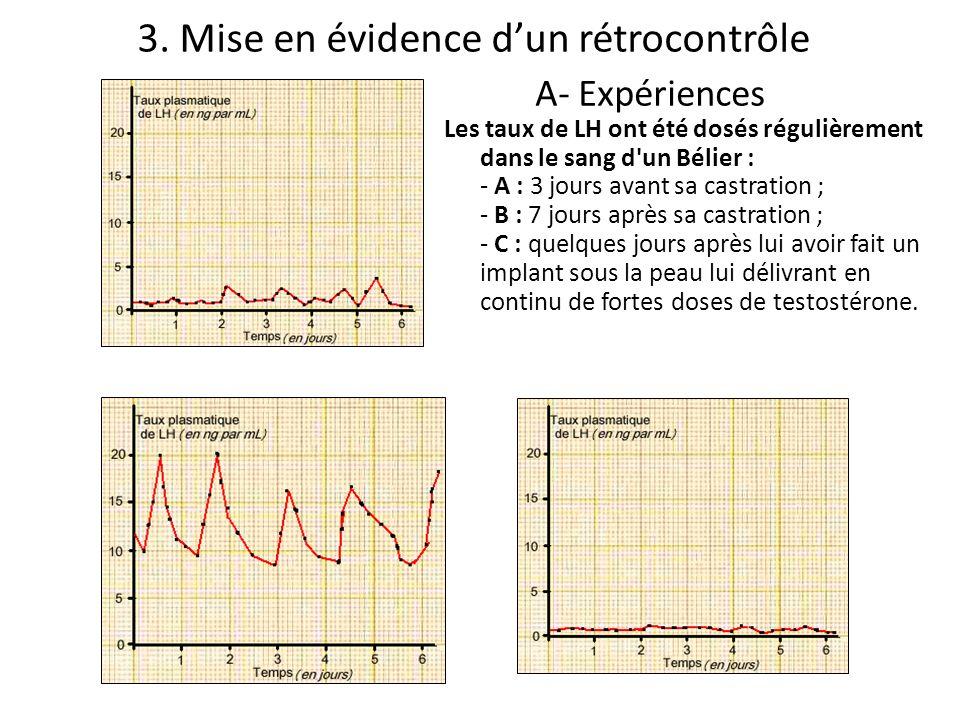 A- Expériences Les taux de LH ont été dosés régulièrement dans le sang d'un Bélier : - A : 3 jours avant sa castration ; - B : 7 jours après sa castra