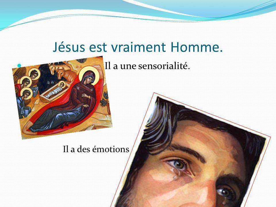 Jésus est vraiment Homme. Il a une sensorialité. Il a des émotions