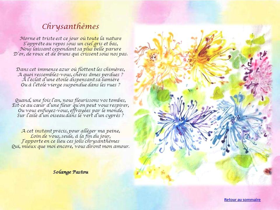 Chrysanthèmes Morne et triste est ce jour où toute la nature Sapprête au repos sous un ciel gris et bas, Nous laissant cependant sa plus belle parure Dor, de roux et de bruns qui crissent sous nos pas.