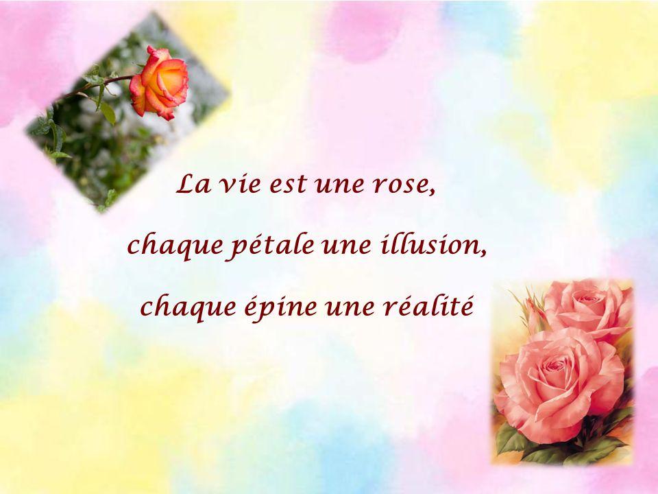 La vie est une rose, chaque pétale une illusion, chaque épine une réalité