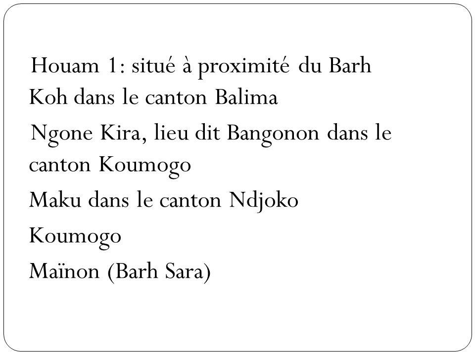 Houam 1: situé à proximité du Barh Koh dans le canton Balima Ngone Kira, lieu dit Bangonon dans le canton Koumogo Maku dans le canton Ndjoko Koumogo Maïnon (Barh Sara)