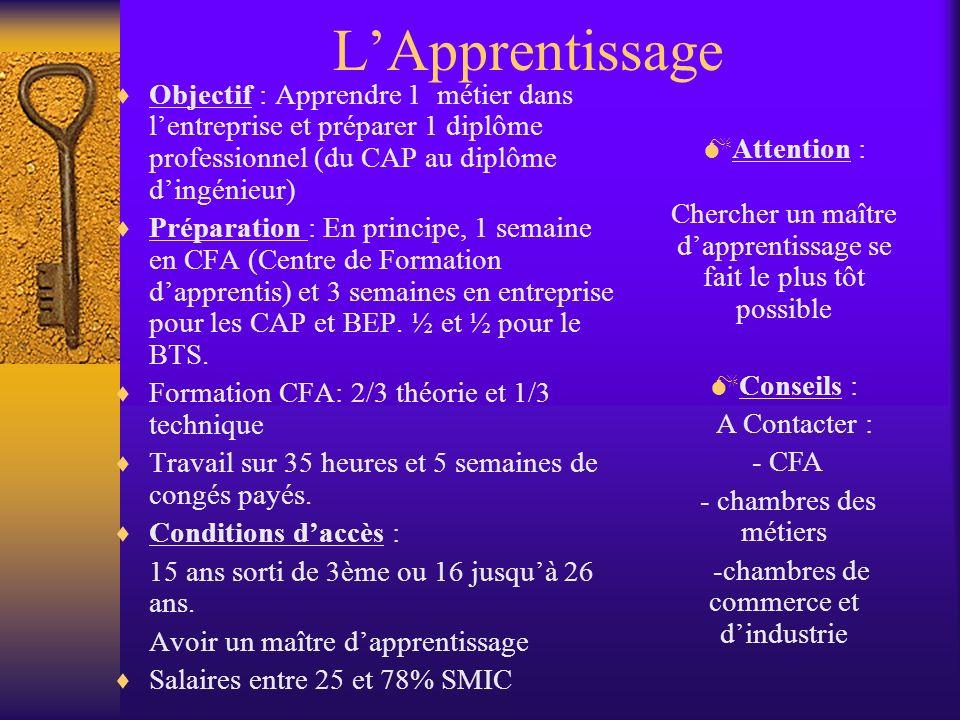 LApprentissage Objectif : Apprendre 1 métier dans lentreprise et préparer 1 diplôme professionnel (du CAP au diplôme dingénieur) Préparation : En prin