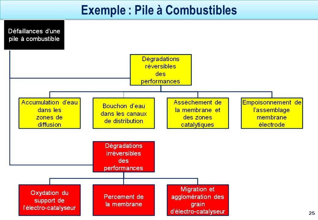 Exemple : Pile à Combustibles 25