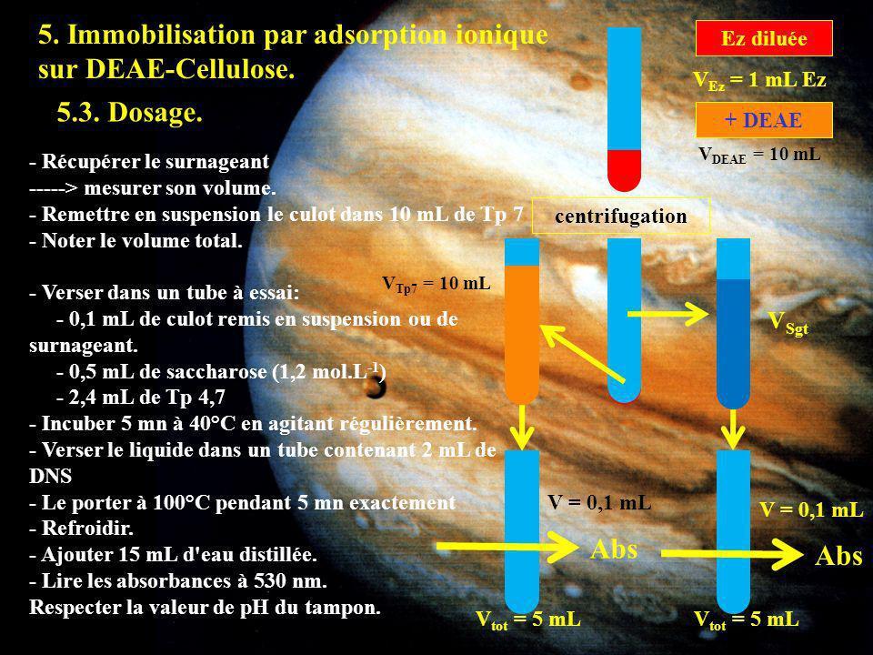 5. Immobilisation par adsorption ionique sur DEAE-Cellulose. centrifugation Ez diluée V Ez = 1 mL Ez V DEAE = 10 mL + DEAE 5.3. Dosage. - Récupérer le