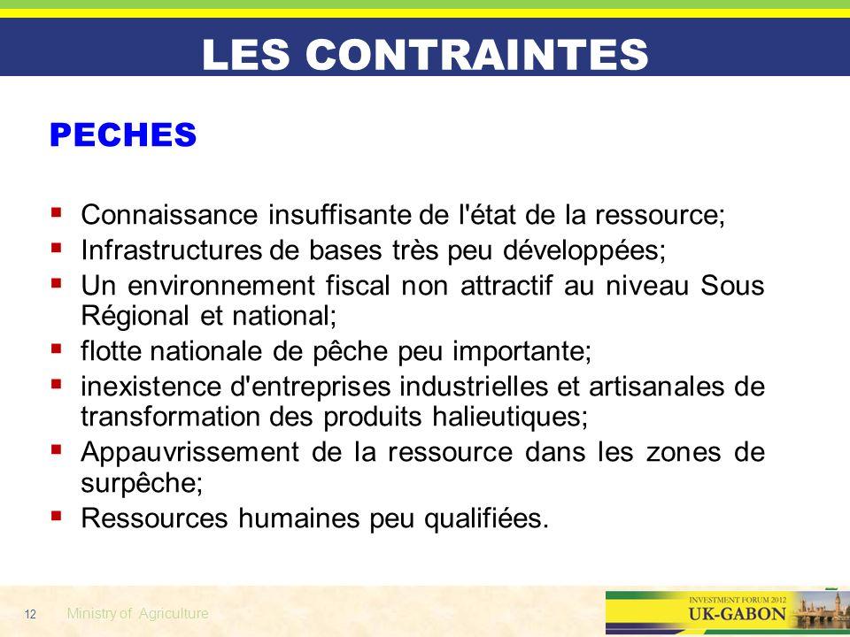 12 Ministry of Agriculture LES CONTRAINTES PECHES Connaissance insuffisante de l'état de la ressource; Infrastructures de bases très peu développées;