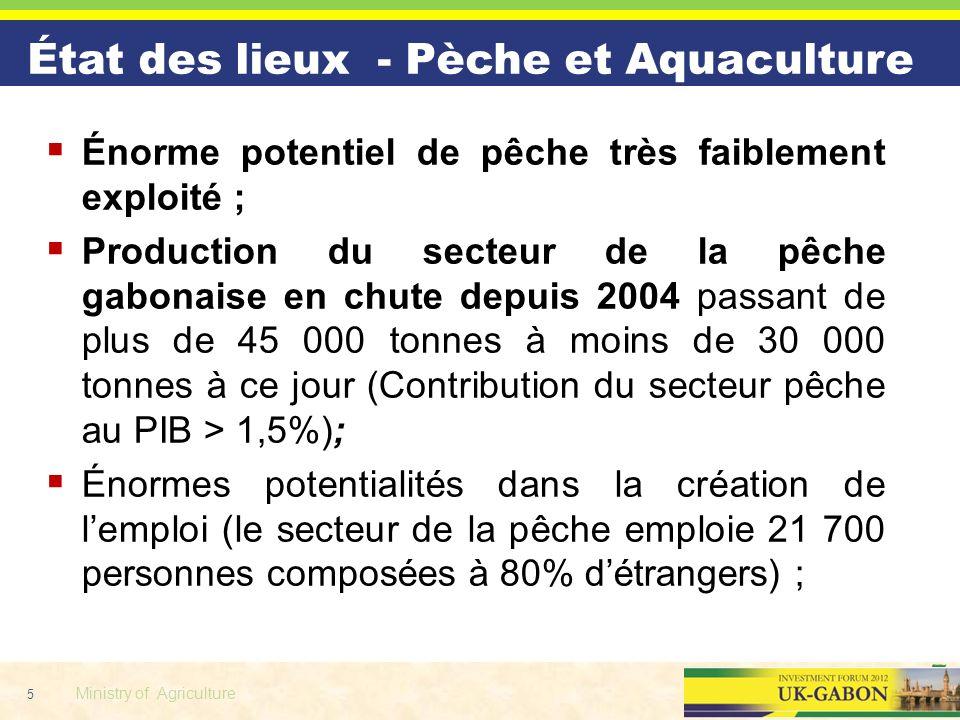 5 Ministry of Agriculture Énorme potentiel de pêche très faiblement exploité ; Production du secteur de la pêche gabonaise en chute depuis 2004 passan
