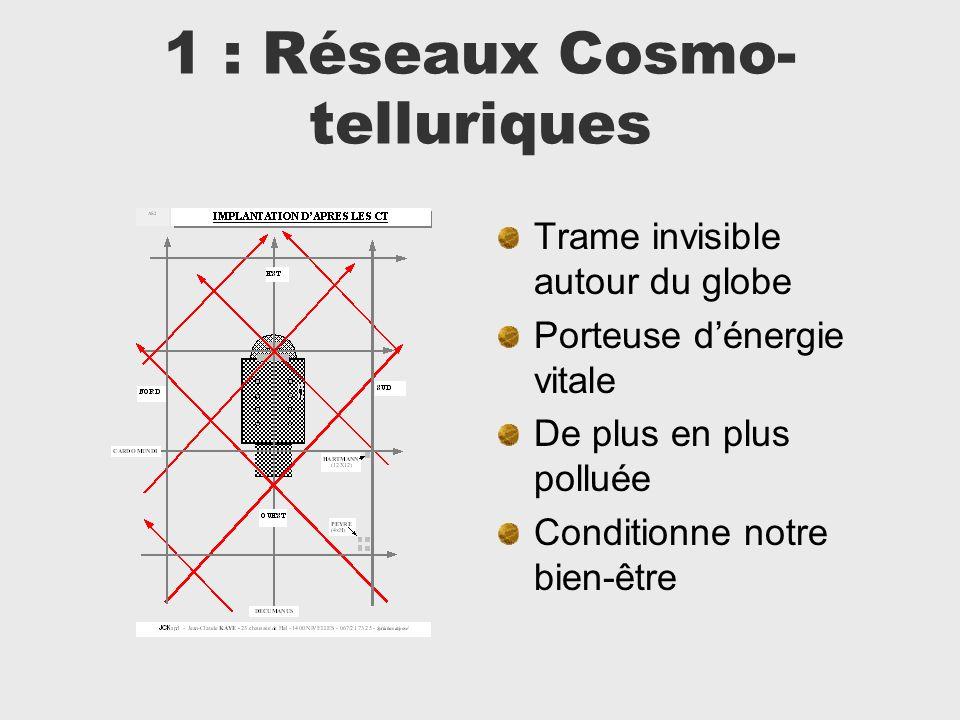 1 : Réseaux Cosmo- telluriques Trame invisible autour du globe Porteuse dénergie vitale De plus en plus polluée Conditionne notre bien-être