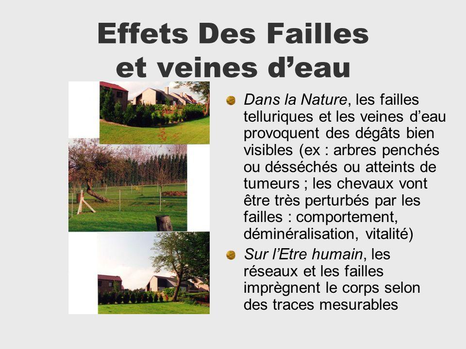 Effets Des Failles et veines deau Dans la Nature, les failles telluriques et les veines deau provoquent des dégâts bien visibles (ex : arbres penchés