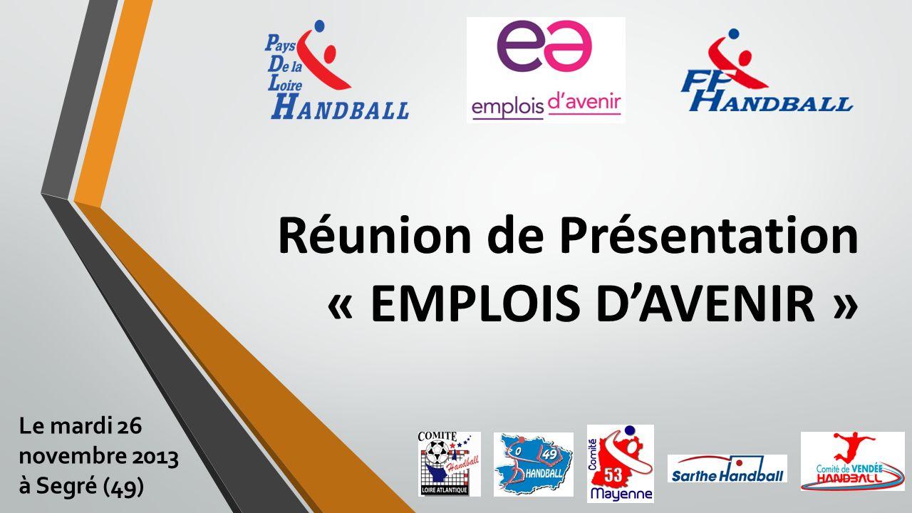 Réunion de Présentation « EMPLOIS DAVENIR » Le mardi 26 novembre 2013 à Segré (49)