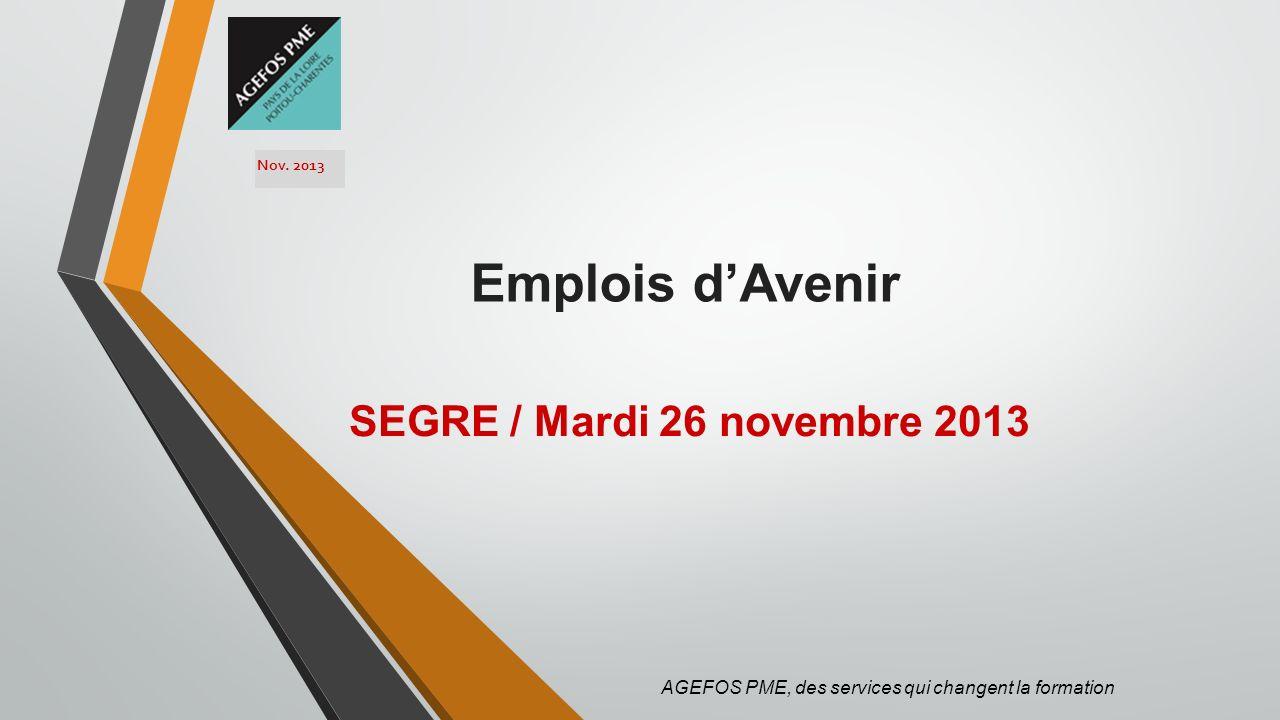Emplois dAvenir SEGRE / Mardi 26 novembre 2013 AGEFOS PME, des services qui changent la formation Nov. 2013