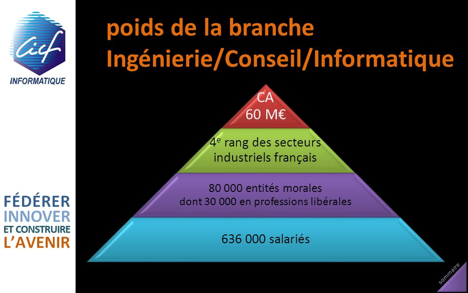 sommaire poids de la branche Ingénierie/Conseil/Informatique CA 60 M 4 e rang des secteurs industriels français 80 000 entités morales dont 30 000 en