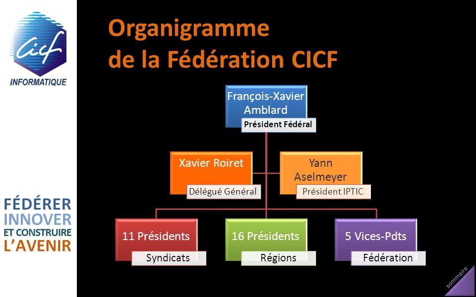 sommaire Organigramme de la Fédération CICF François-Xavier Amblard Président Fédéral 11 Présidents Syndicats 16 Présidents Régions 5 Vices-Pdts Fédér