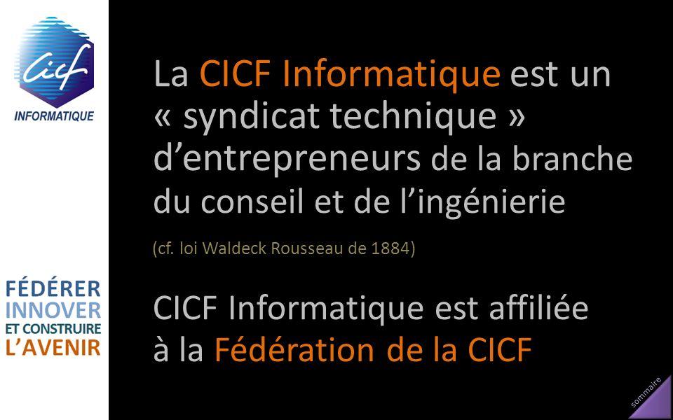 sommaire La CICF Informatique est un « syndicat technique » dentrepreneurs de la branche du conseil et de lingénierie (cf. loi Waldeck Rousseau de 188