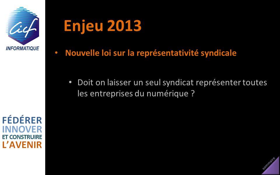 sommaire Enjeu 2013 Nouvelle loi sur la représentativité syndicale Doit on laisser un seul syndicat représenter toutes les entreprises du numérique ?