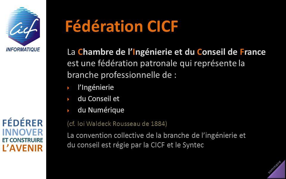 sommaire Fédération CICF La Chambre de lIngénierie et du Conseil de France est une fédération patronale qui représente la branche professionnelle de :