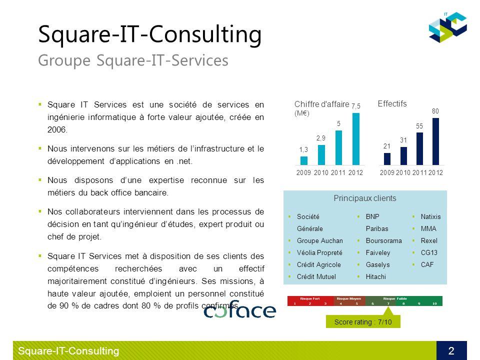Square-IT-Consulting Groupe Square-IT-Services Square IT Services est une société de services en ingénierie informatique à forte valeur ajoutée, créée