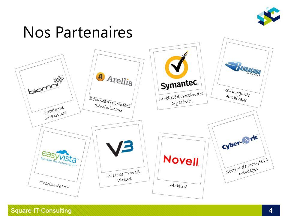 Le VDI V3 Systems
