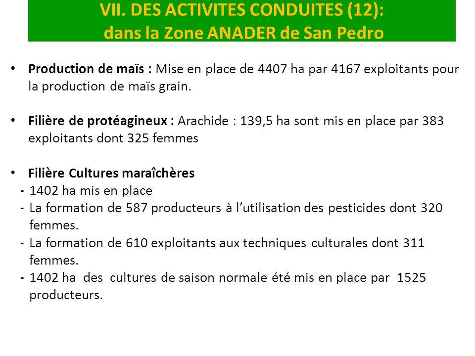 VII. DES ACTIVITES CONDUITES (12): dans la Zone ANADER de San Pedro Production de maïs : Mise en place de 4407 ha par 4167 exploitants pour la product