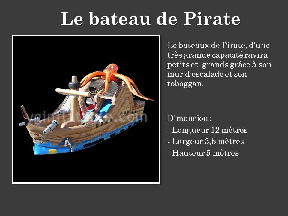 Le bateaux de Pirate, dune très grande capacité ravira petits et grands grâce à son mur descalade et son toboggan. Dimension : - Longueur 12 mètres -