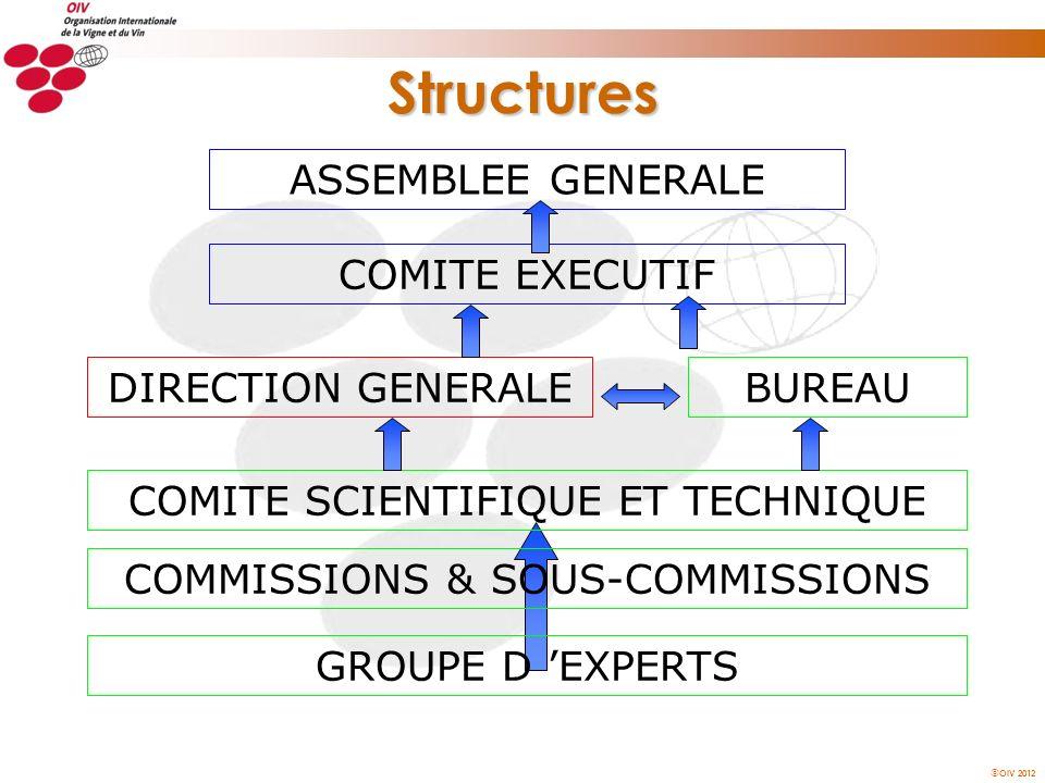 OIV 2012 Structures ASSEMBLEE GENERALE COMITE EXECUTIF COMITE SCIENTIFIQUE ET TECHNIQUE GROUPE D EXPERTS COMMISSIONS & SOUS-COMMISSIONS BUREAUDIRECTIO