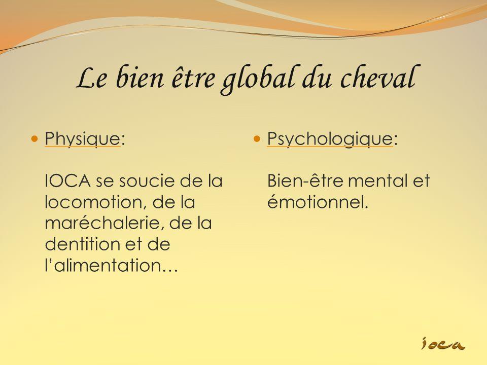 Le bien être global du cheval Physique: IOCA se soucie de la locomotion, de la maréchalerie, de la dentition et de lalimentation… Psychologique: Bien-