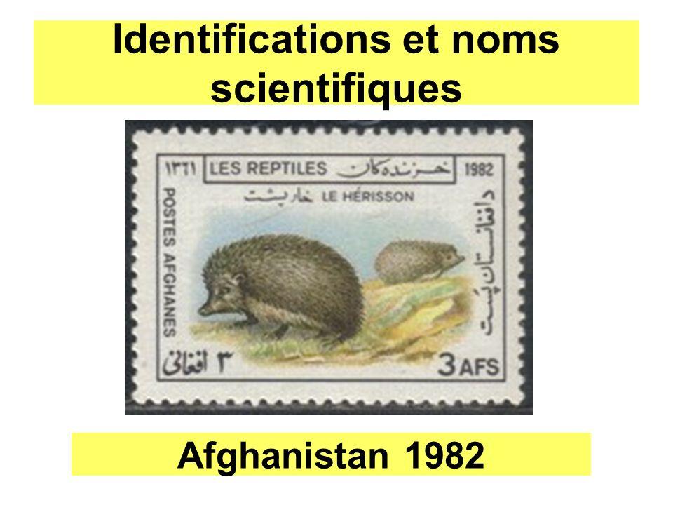 Identifications et noms scientifiques Afghanistan 1982