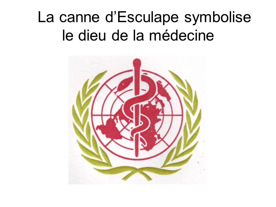 La canne dEsculape symbolise le dieu de la médecine