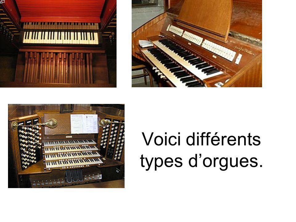 L orgue de Notre Dame de Paris.