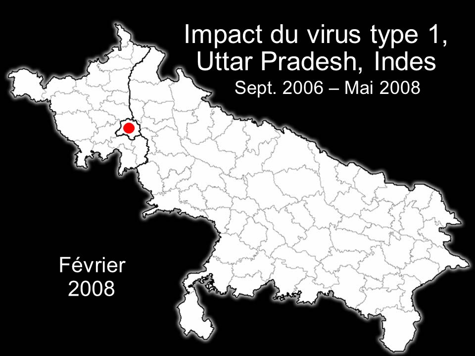 La Fondation Rotary du Rotary International Février 2008 Impact du virus type 1, Uttar Pradesh, Indes Sept. 2006 – Mai 2008