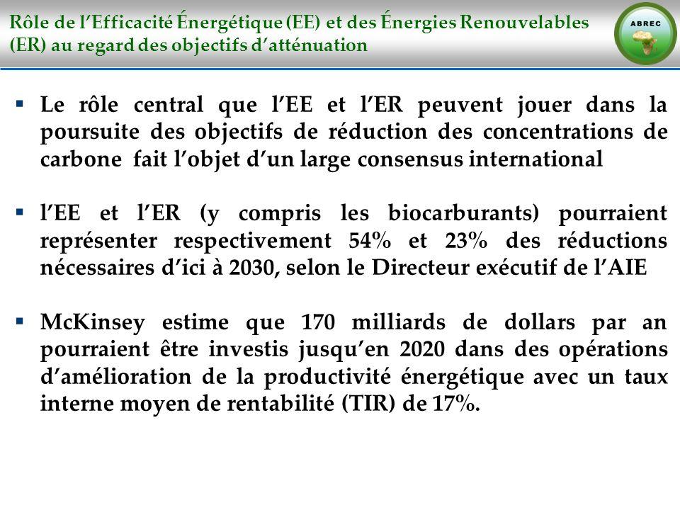 Rôle de lEfficacité Énergétique (EE) et des Énergies Renouvelables (ER) au regard des objectifs datténuation Le rôle central que lEE et lER peuvent jo