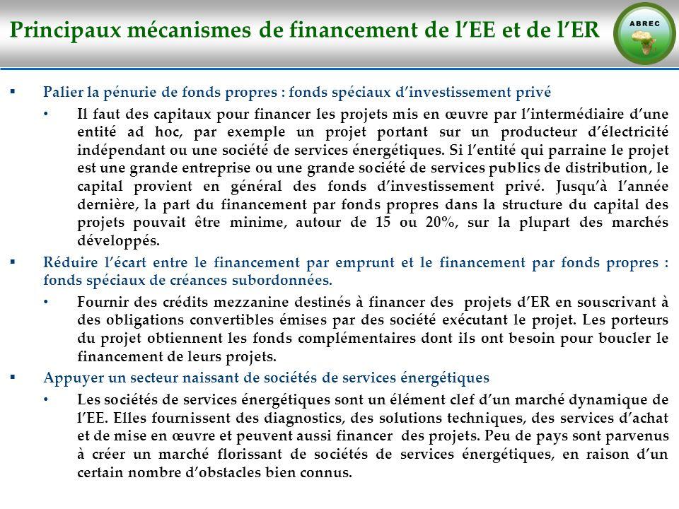 Principaux mécanismes de financement de lEE et de lER Palier la pénurie de fonds propres : fonds spéciaux dinvestissement privé Il faut des capitaux p
