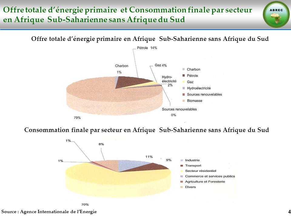 Offre totale dénergie primaire et Consommation finale par secteur en Afrique Sub-Saharienne sans Afrique du Sud 4 Source : Agence Internationale de lE