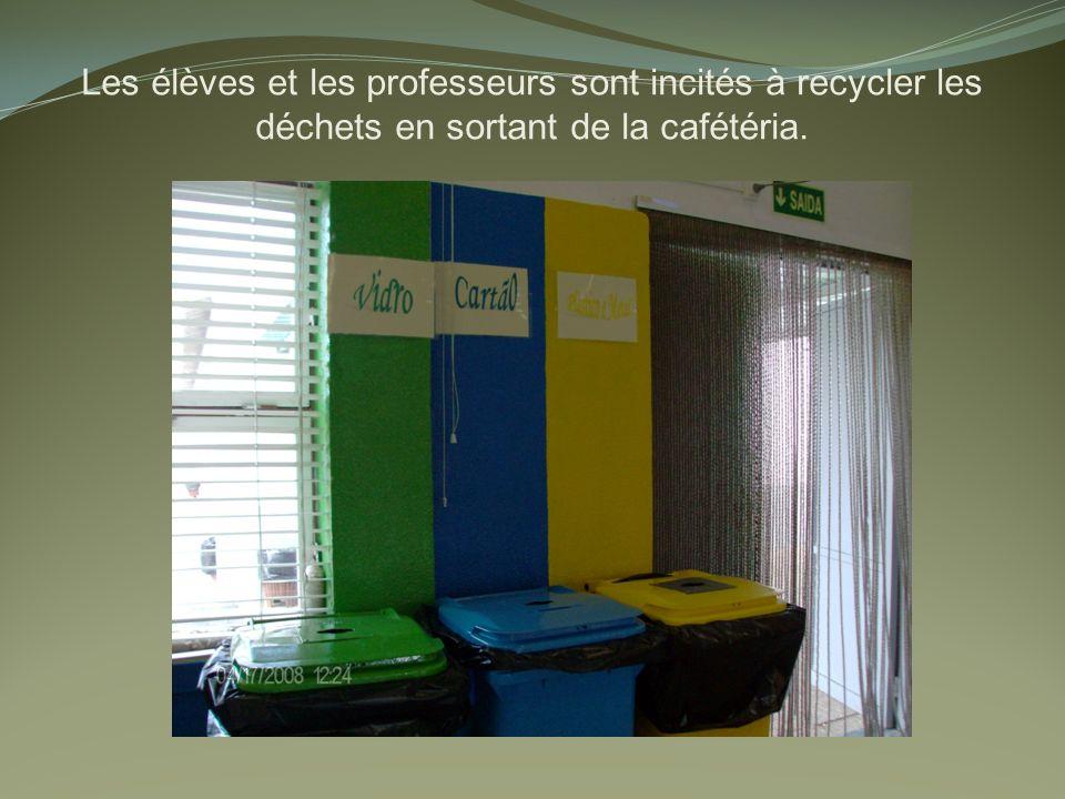 Les élèves et les professeurs sont incités à recycler les déchets en sortant de la cafétéria.