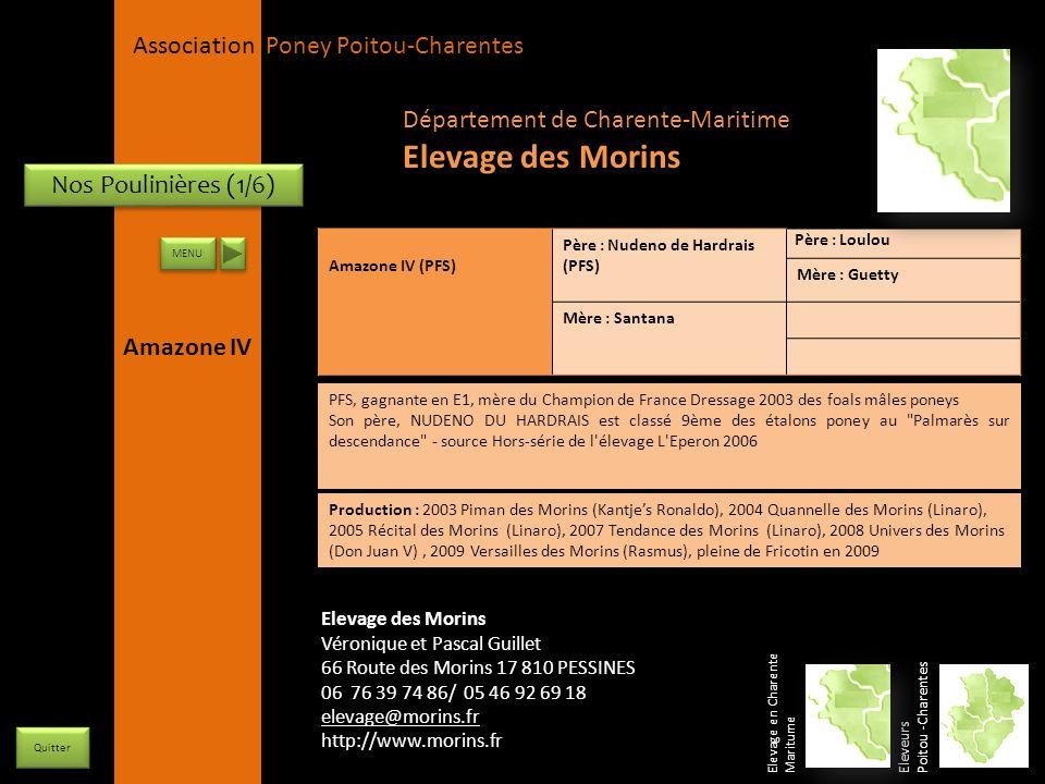 APPC Présidente Lynda JOURDAIN La Gravière 79400 AUGE 06 27 34 23 78 Association Poney Poitou-Charentes Nos Poulinières (1/6) Amazone IV (PFS) Père :