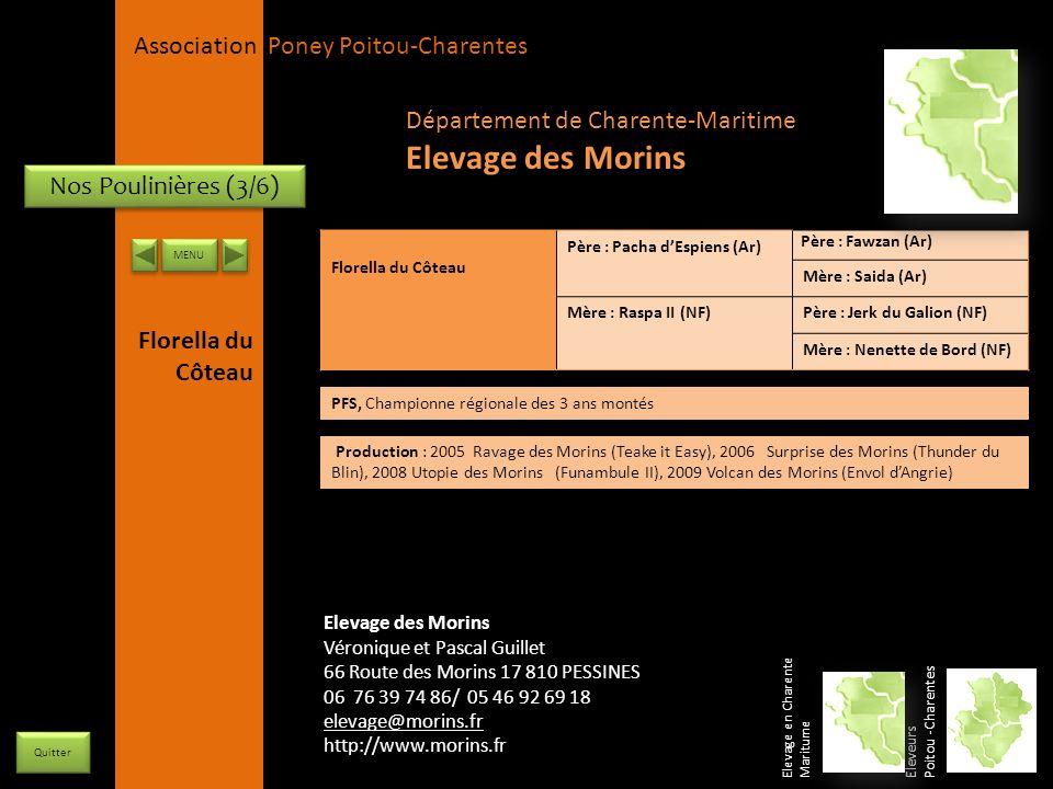 APPC Présidente Lynda JOURDAIN La Gravière 79400 AUGE 06 27 34 23 78 Association Poney Poitou-Charentes Nos Poulinières (3/6) Florella du Côteau Père