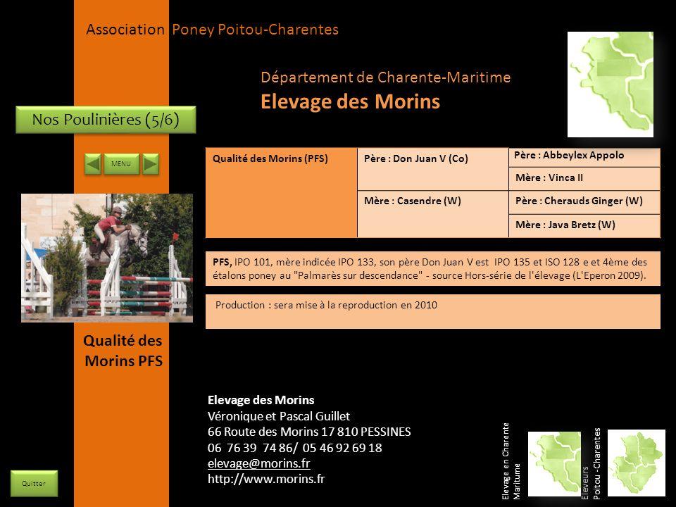 APPC Présidente Lynda JOURDAIN La Gravière 79400 AUGE 06 27 34 23 78 Association Poney Poitou-Charentes Nos Poulinières (5/6) Qualité des Morins (PFS)